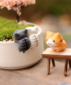 חתול מיניאטורי