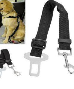 חגורת בטיחות לכלב