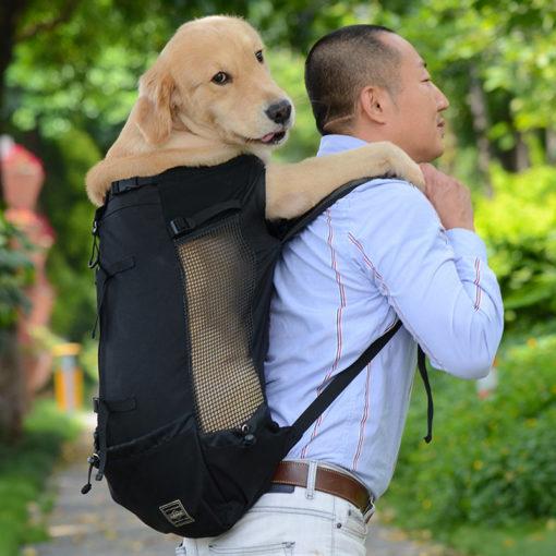 תיק גב לכלבים גדולים